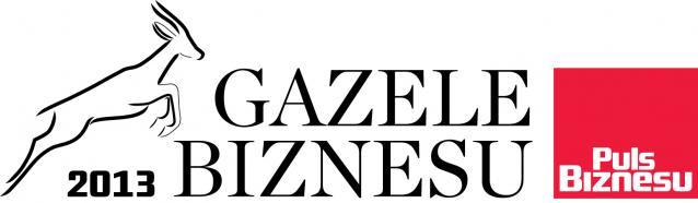 Gazele Biznesu 2013